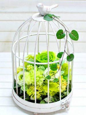 グリーンの花の鳥かご型プリザーブドフラワー