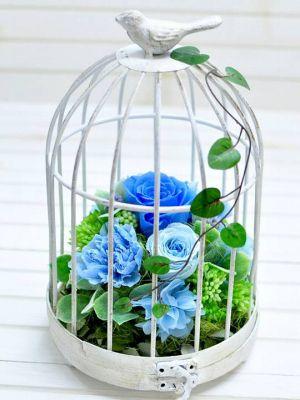 鳥かごに青バラが入った結婚記念日アレンジ