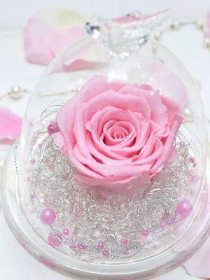 プロポーズ ピンクのバラ ガラスドーム