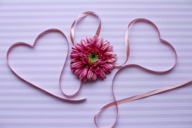 ピンクのハートとかわいいガーベラの花