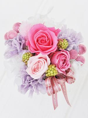 濃いピンク・淡ピンク・アンティークピンクのバラ
