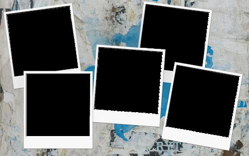 白い写真5枚のイメージ