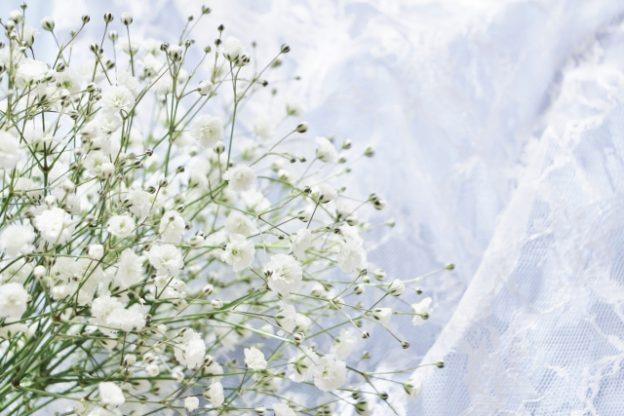 真っ白な小さい花のかすみ草