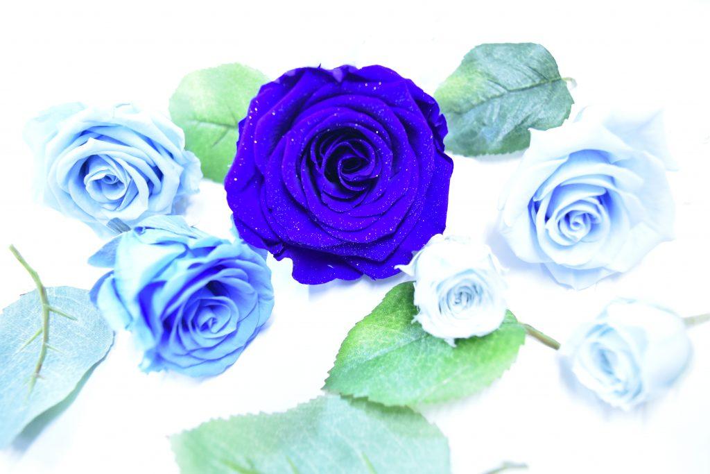 5種類の色鮮やかなブルーのプリザーブドフラワーのバラ