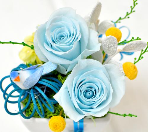 プリザーブドフラワーのライトブルーのバラ2輪