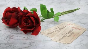 2本の赤バラ