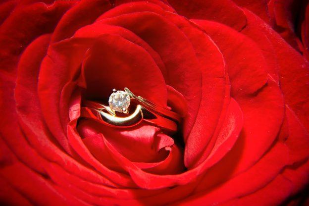 赤いバラに埋め込んだダイヤの婚約指輪