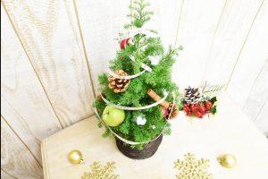 可愛い小さなクリスマスツリー