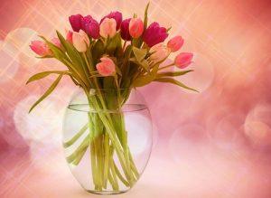 ピンク色のチューリップがガラスの花瓶に活けてある画像