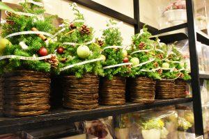 フルールドゥマカロン ミニクリスマスツリー