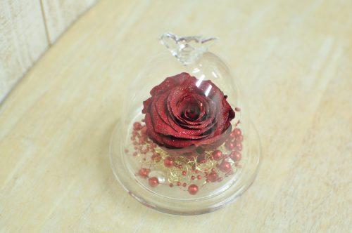 ガラスドームの中に赤く大輪のバラが入ったアレンジメント