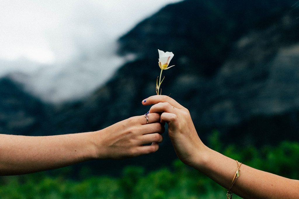 一輪の花をプレゼント