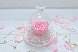 淡いピンクとパールのガラスドームに入ったアレンジメント