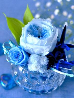 ブルー系のバラとヒトデのアレンジメント