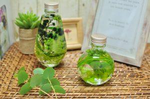 グリーンの葉が美しいハーバリウム