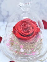 プロポーズ 赤バラ ガラスドーム