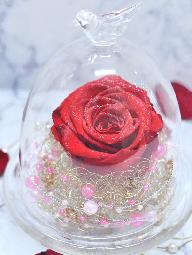 ガラスドームに入った赤い一輪のダイヤモンドローズとピンクのパール