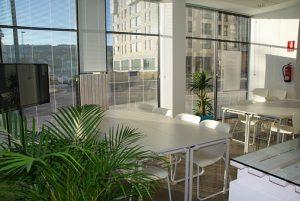 オフィスに観葉植物が飾ってある画像