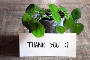 植物とサンキューのメッセジカードの画像
