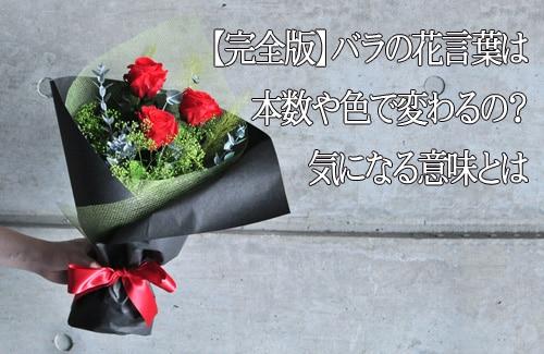 バラの花言葉の意味とは?