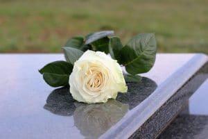 墓石に置かれた一輪の白いバラ