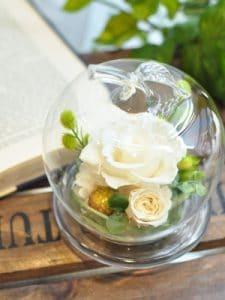 ガラスドーム(ホワイト)