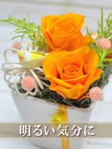 Happy bird (オレンジ)